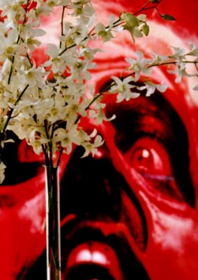 Lawler 5 red face, white flowers